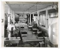 Workers bottling olive oil, California