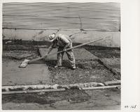 Laying concrete sidewalk, San Francisco