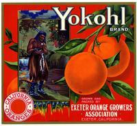 Yokohl Brand California oranges, Exeter Orange Growers Association