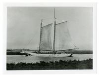 Ship loaded with salt sacks, Newark, Alameda County