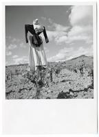 Scarecrow, Palomino Ranch, Sonoma County, 1951