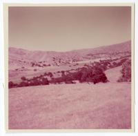 View of rolling hills