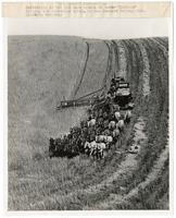 Cutting wheat with a 33 horse