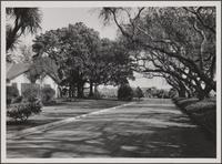 Bixby Ranch, east of Long Beach