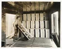 Worker loading boxes of Sunkist and Shamrock oranges into train car