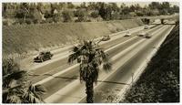Freeway, Los Angeles