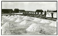 Photographs of the Alameda County salt industry