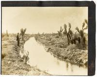Newly opened irrigation ditch, California