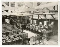 Women workers in a lemon packing house at Villa Park, California, circa 1925