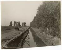 Canal & Road, Near El Centro, Imperial County, California